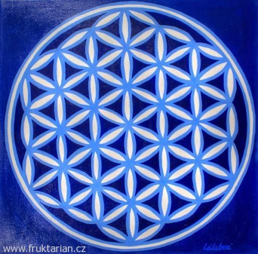 Jana Látalová: Modrý květ života