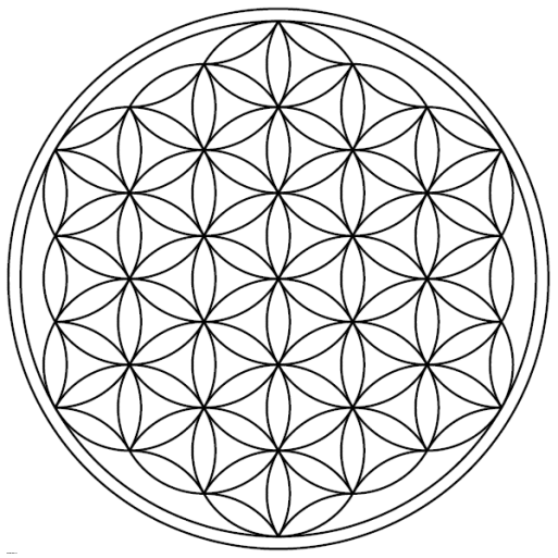 Flower-of-Life-19circles36arcs-enclosed