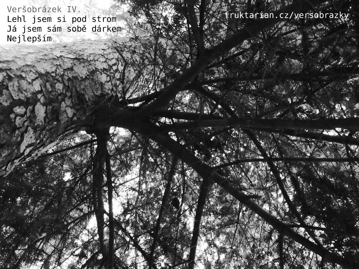 versobrazek04_lehl-jsem-si-pod-strom
