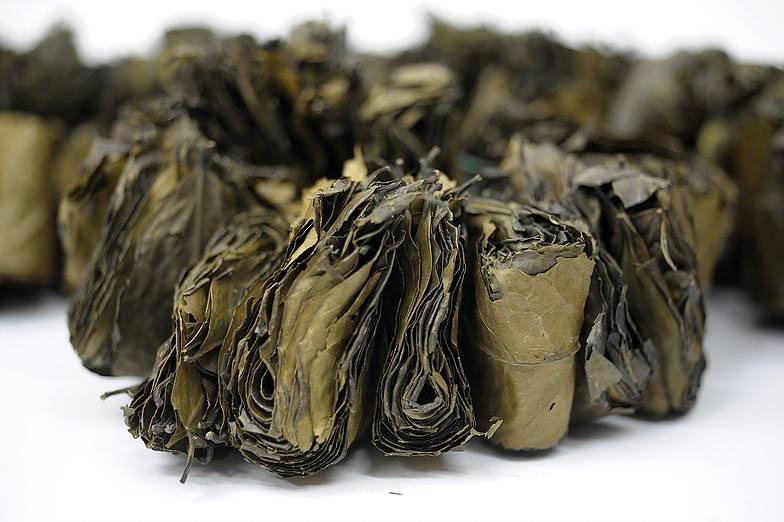 Kategorie: Amazonský čaj wayusa