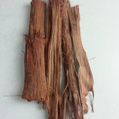 Adaptogeny (rostliny pomáhající při stresu a únavě)