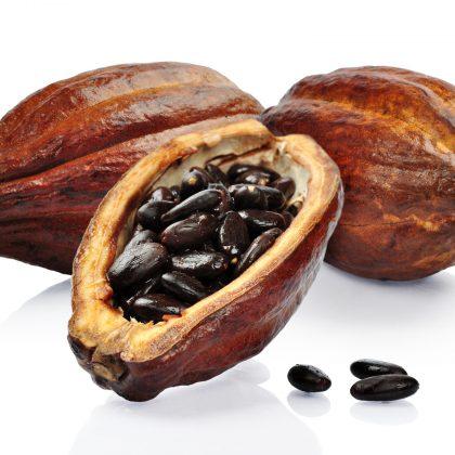 Medicinální kakao